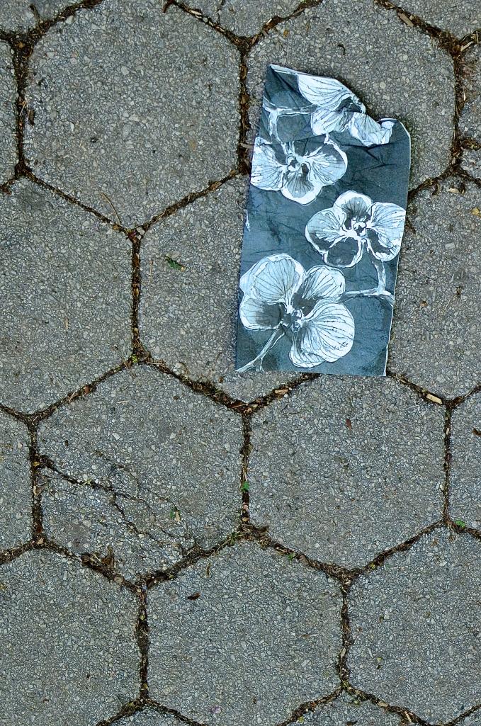 BlossomsPrint