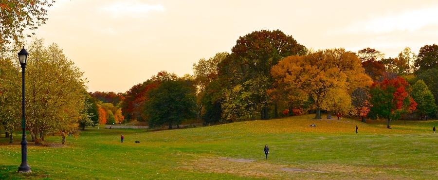 AutumnInNewYork