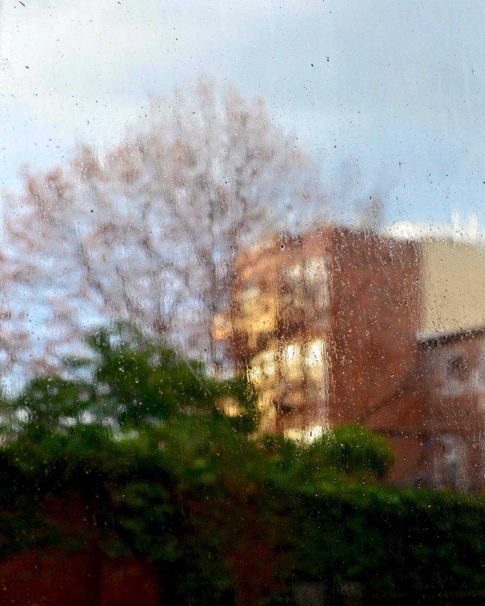 brooklyn-rain